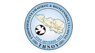 Photo of Εμποροεπαγγελματικός Σύλλογος Τήνου: «Πειραματόζωα»